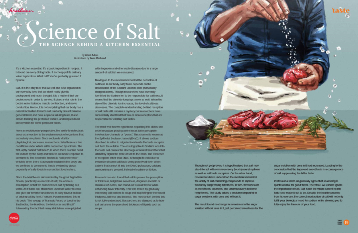 Science of Salt: The Science Behind a Kitchen Essential - Iman ...